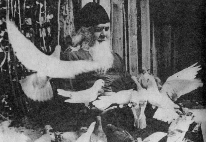 Прославление преподобного Амфилохия Почаевского