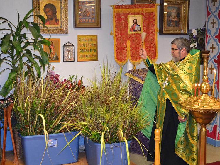 Вербное воскресенье в славянских странах