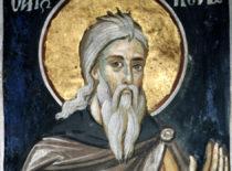 Преподобный Конон Палестинский (+555)