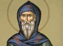 Преподобный Феофан Македонский (XVI в.)